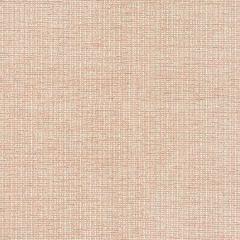Beginnings 21 Desert Stout Fabric
