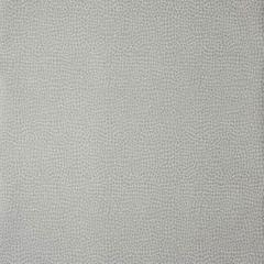 30020W Grey 01 Trend Wallpaper