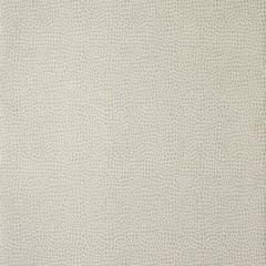 30020W Dove 02 Trend Wallpaper