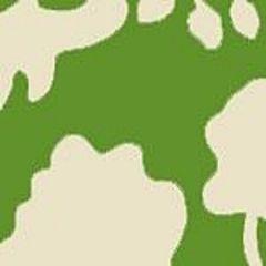 AC804B-06 POTALLA BACKGROUND Jungle Green on Tint Quadrille Fabric