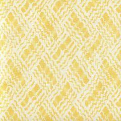 AC860-04 BAHA II Yellow on Tint Quadrille Fabric