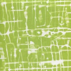 AC995-07 TWILL REVERSE Palm Green on White Quadrille Fabric