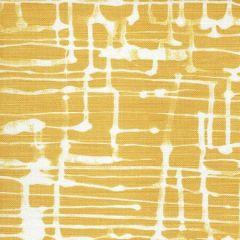 AC995T-09TLC TWILL REVERSE Inca Gold on Tint Quadrille Fabric
