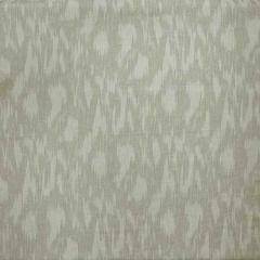 AM100324-1 APULIA Canvas Kravet Fabric