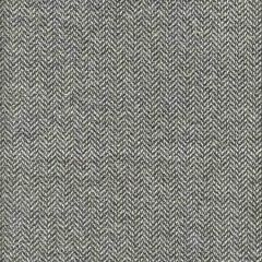 AM100329-52 NEVADA Rapid Kravet Fabric