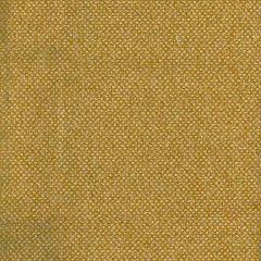 AM100332-4 YOSEMITE Eagle Kravet Fabric
