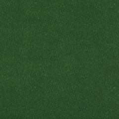 AMES-3 AMES Forest Kravet Fabric