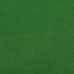 AMES-30 AMES Lilypad Kravet Fabric
