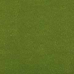 AMES-303 AMES Moss Kravet Fabric