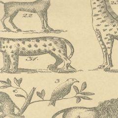 AMW10001-1611 ARK Parchment Kravet Wallpaper
