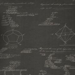 AMW10046-21 PYTHAGORAS Charcoal Kravet Wallpaper