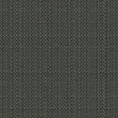 ANNAMITE Carbon Fabricut Fabric