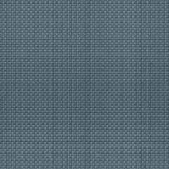 ANNAMITE Denim Fabricut Fabric