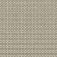 ANNAMITE Sesame Fabricut Fabric