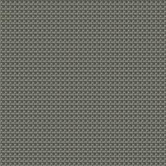 ANNAMITE Sterling Fabricut Fabric