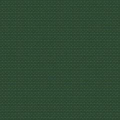 ANNAMITE Turtle Fabricut Fabric