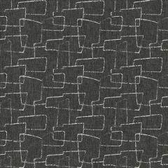 APPROACHABLE Ebony Kasmir Fabric