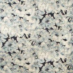 AYRLIES-50 AYRLIES Indigo Kravet Fabric