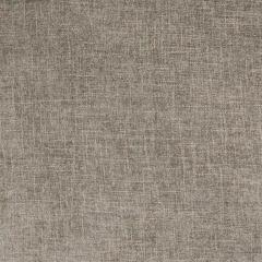 B3807 Pewter Greenhouse Fabric