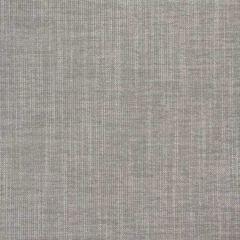 B8533 Slate Greenhouse Fabric