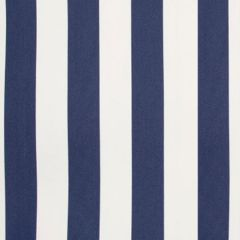 B8812 Nautical Greenhouse Fabric