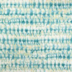 B8887 Teal Greenhouse Fabric