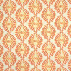B8905 Tangerine Greenhouse Fabric