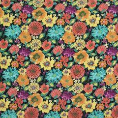B8924 Black Star Greenhouse Fabric