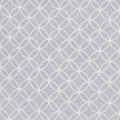 CIRCLE BACK Gray Carole Fabric
