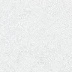 COD0516N Aura Candice Olson Wallpaper