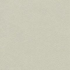 COD0517N Aura Candice Olson Wallpaper