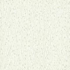 COD0521N Gala Candice Olson Wallpaper
