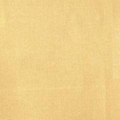 DG-10047-013 ANTOINETTE Pyrite Donghia Fabric
