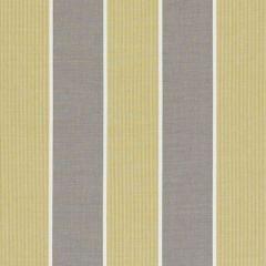 F0597/01 CHATBURN Citrus Clarke & Clarke Fabric