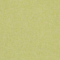 F1068/07 MIDORI Citron Clarke & Clarke Fabric