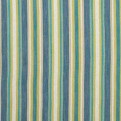 F1352/03 ZIBA Denim Chartreuse Clarke & Clarke Fabric