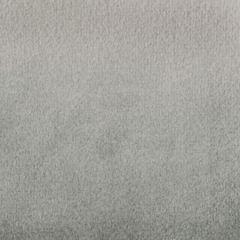 F1804 Nickel Greenhouse Fabric