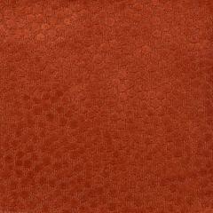 F2345 Apricot Greenhouse Fabric