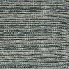 F2720 Aqua Greenhouse Fabric