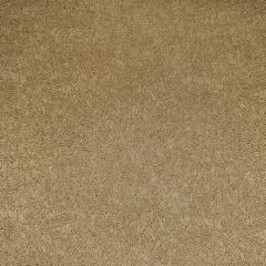 F2763 Topaz Greenhouse Fabric