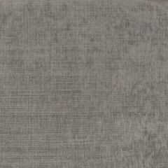 F2946 Grey Greenhouse Fabric