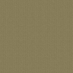 GWF-3321-68 AVIGNON CHEVRON Brown Groundworks Fabric