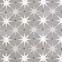HN 0001 42023 STAR POWER Grey Scalamandre Fabric