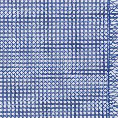 178190 SUGAR CANE Navy Schumacher Fabric