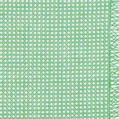 178191 SUGAR CANE Green Schumacher Fabric