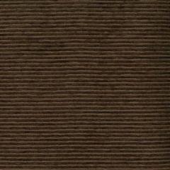 ROLEX Cocoa 40 Norbar Fabric