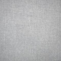 S1131 Slate Greenhouse Fabric