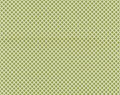BK 0003K65121 BELLAIRE TRELLIS Leaf Scalamandre Fabric
