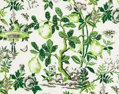 16583-003 SHANTUNG GARDEN Verdance Scalamandre Fabric