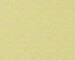 26914M-003 SHAGREEN Seagrass Scalamandre Fabric